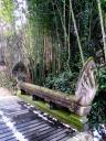 Nogent Citoyen Jardin Tropical Pont Khmer
